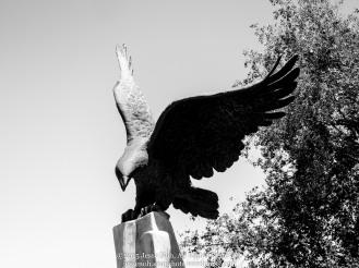 Eagle Hills Community